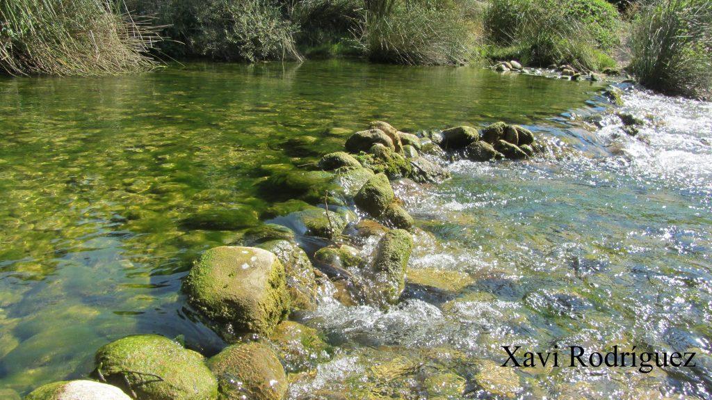 Río Guatizalema Sipán Huesca